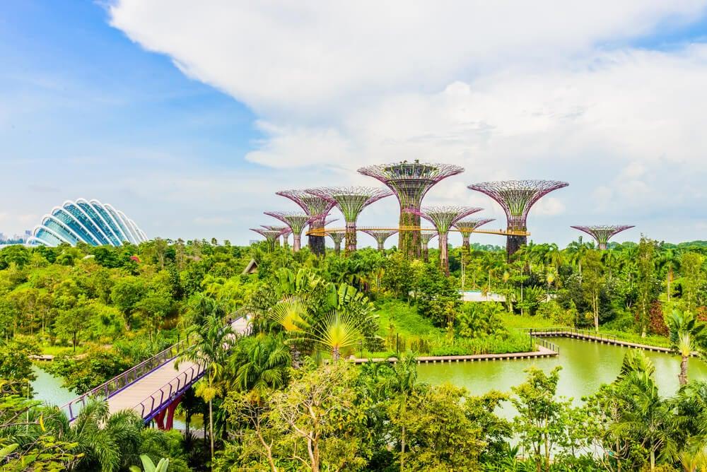 Les arbres magiques de Gardens by the Bay à Singapour